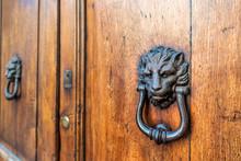 Two Door Lion Head Knockers, K...