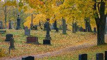 Old Cemetery In Autumn Rain, M...