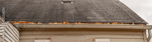 Fotografia gutters are full of leaves and must be cleaned