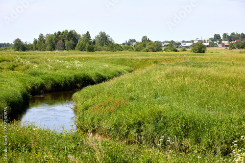 Warm beautiful summer landscape with a river and grass. A pond on a background of greenery and blue sky. Summer day
