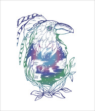 Color Illustration Of A Fairy Raven With A Feathers, Night Sky Inside, Stars And The Moon.
