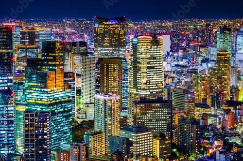 Obraz na plátně  tokyo tower and city skyline under blue night