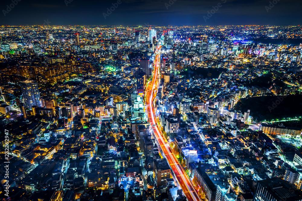 Fototapeta tokyo tower and city skyline under blue night