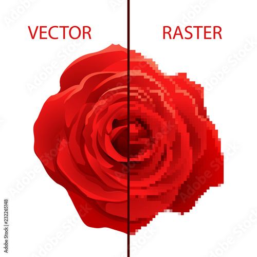 Valokuva Example of vector and raster comparison, difference between formats