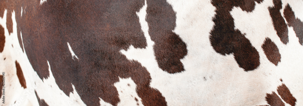 Bull skin pattern and texture