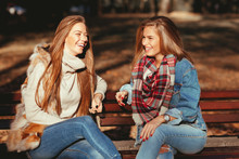 Two Young Women Sitting On A Bench In The Park And Laughing