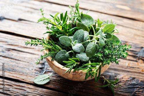 Fototapeta Mix of herbs obraz