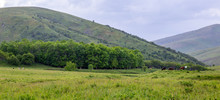 Panorama Of Grassy Green Hills In Spring