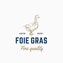 Goose Pate Foie Gras Abstract ...