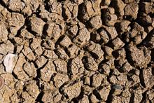 Ckracked Barren Soil