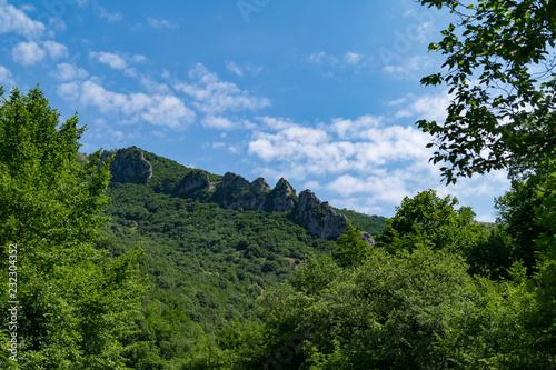 Fotografie, Obraz  Vista nel parco del Monte Cucco