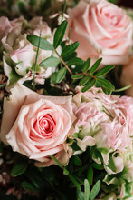 Fresh Soft Pink Roses