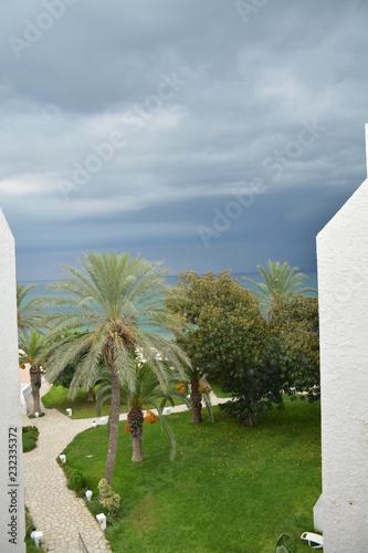 Fotografia  Тунис