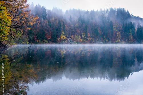Plakat Mgła przy Freibergsee, Allgäu Alps, OberallgÃuu, Bavaria, Niemcy