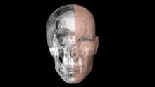 Human Face Half Skin, Half Metal Skull ,robotic Head. 3d Render