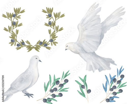 Fotografia Pigeon and olive clip art digital drawing watercolor bird fly peace dove for wed