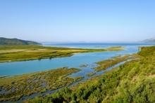 Estuary Of The Vivar Canal, Bu...
