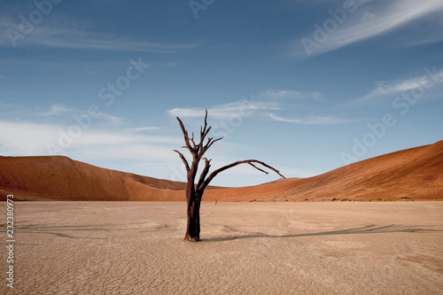 Foto op Canvas Zalm Dead Camelthorn Trees against red dunes and blue sky in Deadvlei, Sossusvlei. Namib-Naukluft National Park, Namibia, Africa