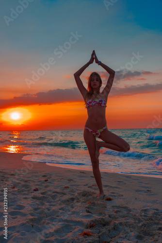 hermosa chica rubia y sexy disfrutando de un dia de verano en la playa con su bikini Canvas Print