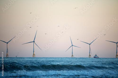 Aberdeen Windfarm in front of Dusk Sky Canvas Print