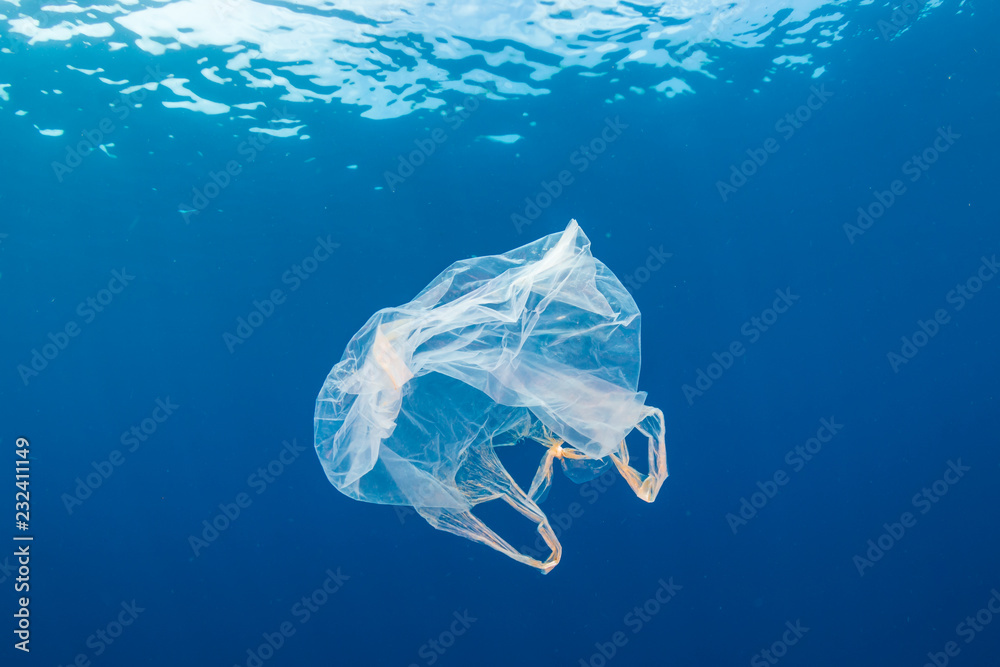 Fototapety, obrazy: Underwater pollution:- A discarded plastic carrier bag drifting in a tropical, blue water ocean