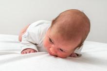 Newborn Baby Beginning To Pick...