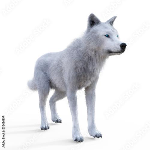 Obraz na plátně Digital 3D Illustration of a Wolf