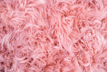 Pink Sheepskin Background. Fur...