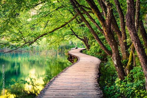 Naklejka premium Malowniczy poranek w Plitwickim Parku Narodowym. Kolorowa wiosna scena zielonego lasu z jeziorem z czystą wodą. Wspaniały widok na okolicę Chorwacji, Europy. Piękno natury koncepcja tło.