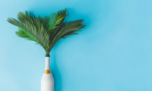 Champagne Bottle With Tropical Green Palm Leaves On Pastel Blue Background. Summer Holiday Concept With Creative Copy Space. Summer Tropical Celebration Party Flat Lay.