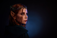 Portrait Of Gorgeous Elf In Ti...