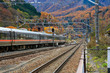 The train is moving in the Japanese province of Nagano in the season of autumn travel.