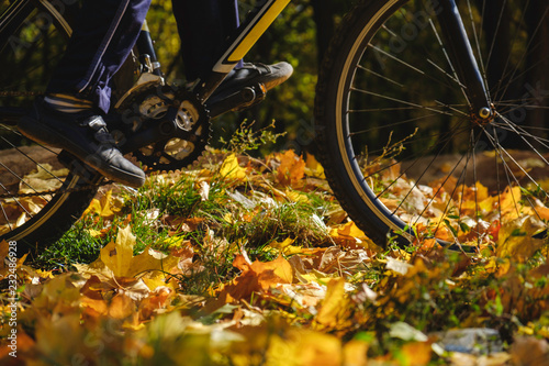 Foto op Canvas Herfst Bike and autumn leaves. Bicycle on ground covered in fallen autumn leaves.