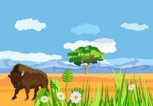 Big Bison In The American Prairie, Wildlife Landscape Grass Vector Concept Illustration