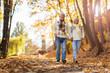 Leinwanddruck Bild - Senior couple in autumn park