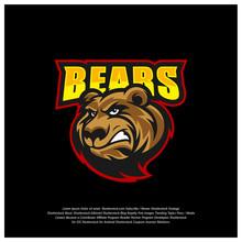 Bear Logo Design Vector. Moder...