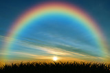 Fototapeta Rainbow - The rainbow at sunset in the bush isolated