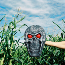 Creepy Halloween Skull With Red Eyes Is Held In Front Of Corn Stalks And A Cloudy Blue Sky.