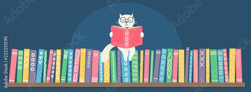 Bookshelf with sitting hand drawn fantasy white cat reading book.