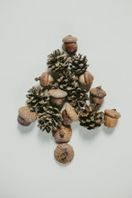 Pine Cone And Nuts Forming A Shape Of A Christmas Tree