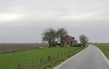 Little House In Rural Flat Landscape With Sheep