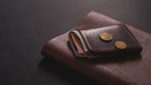 Brown Male Wallet
