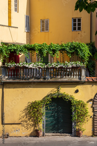 Fotobehang Zuid-Amerika land Rooftop garden terrace as seen from a walk around the walls encircling the beautiful city of Lucca in Tuscany, Italy