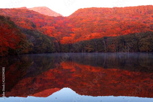 青森県 蔦沼の朝焼けと紅葉