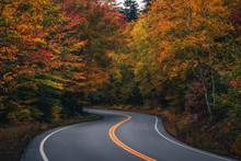 Autumn Country Road In The Whi...