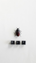 Big Dead Beetle Next To The Word BUG Written With Keyboard Keys