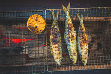 Grilling Fish On A Shichirin