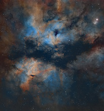 IC1318 The Butterfly Nebula In Colour