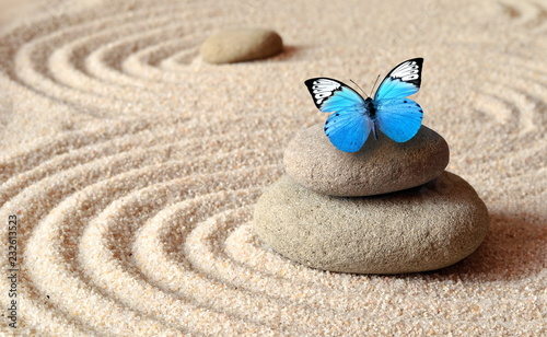 Staande foto Stenen in het Zand A blue vivid butterfly on a zen stone with circle patterns in the grain sand.