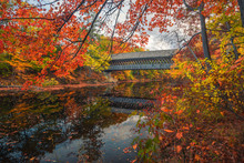 Hinniker Covered Bridge In Aut...